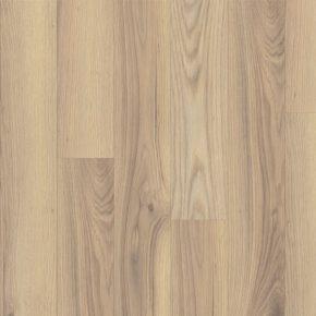 oak alberta 4v