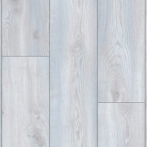 Laminate LFSROY-4793/1 5804 OAK TERRA WHITE Lifestyle Royal