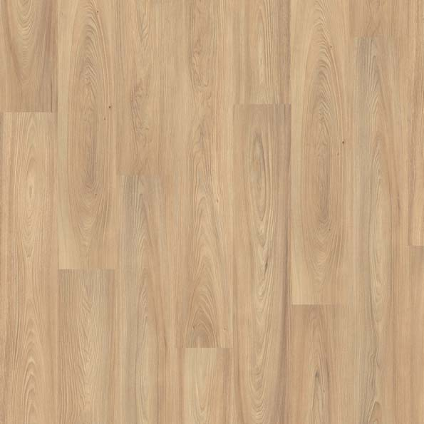 Laminate ELM DRAYTON LIGHT EGPLAM-L069/0 | Floor Experts
