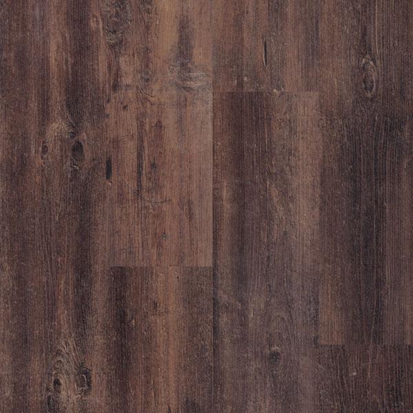 Laminate PINE HIGHLAND LFSACT-5885 | Floor Experts