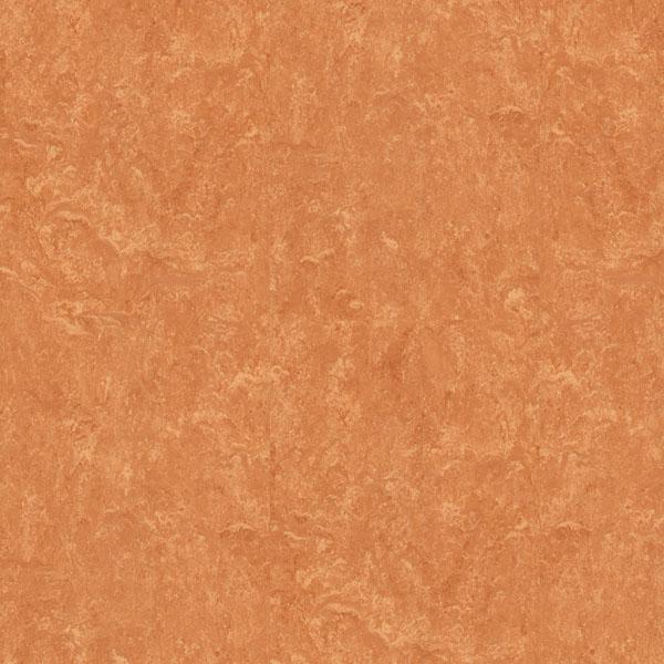 Other floorings DECOR 6634 PRLI6634   Floor Experts